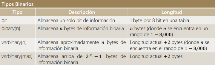 BinaryType_1