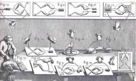 Los-experimentos-electricos-de-Luigi-Galvani-600x359