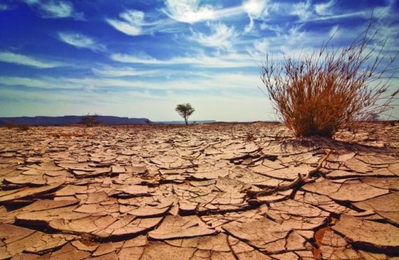 Sequía.jpg