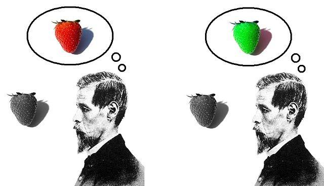 640px-Inverted_qualia_of_colour_strawberry